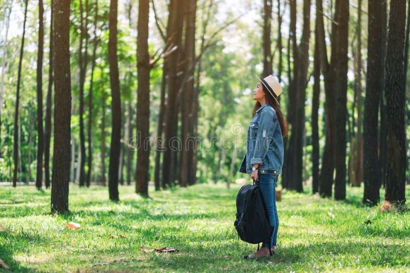 Żeński podróżnik patrzeje w pięknych sosnowych drewna z plecakiem i kapeluszem obrazy stock
