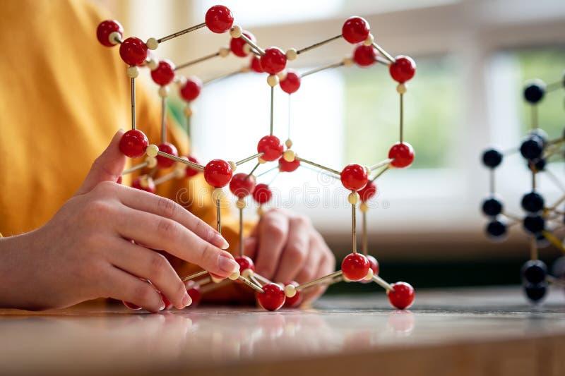 Żeński uczeń trzyma cząsteczkowej struktury modela Nauki klasowy pojęcie zdjęcie stock