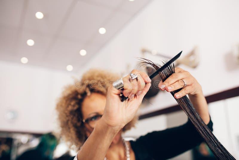 Żeński włosianego stylisty kobiety ` s tnący włosy przy salonem zdjęcie stock