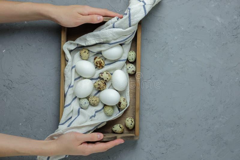 Żeńskie ręki trzymają kurczaka i przepiórek jajka w drewnianym pudełku z ręcznikiem na szarości betonują tło Odgórny widok Mieszk zdjęcia royalty free