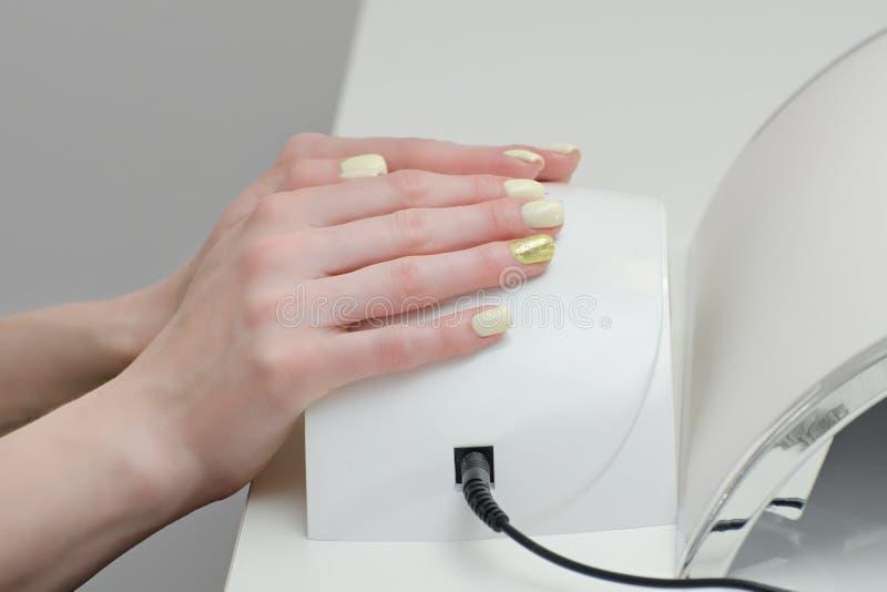 Żeńskie ręki z manicure'em na ULTRAFIOLETOWYM DOWODZONYM gwóźdź lampy dostawcy Biały tło fotografia stock