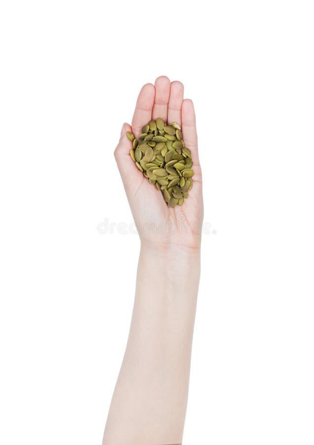 Żeńskiego ręka chwyta zdrowi życiorys dyniowi ziarna obraz stock