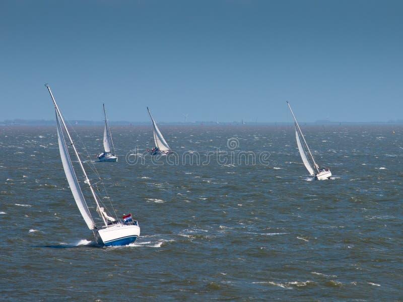 Żeglowanie łodzie w silnym wiatrze obraz royalty free