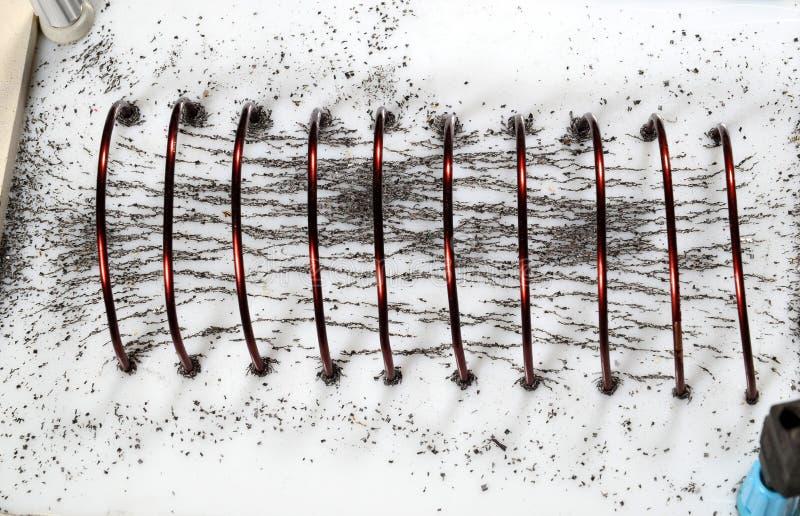 Żelazny proszek pokazuje magnesowe linie siły w zwitce zdjęcie stock