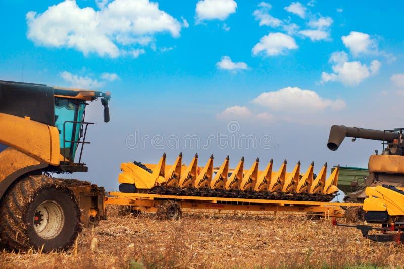 Żniwiarz maszyna zbierać pszenicznego pola działanie Syndykata żniwiarza rolnictwa maszyna zbiera złotego dojrzałego pszenicznego obrazy stock