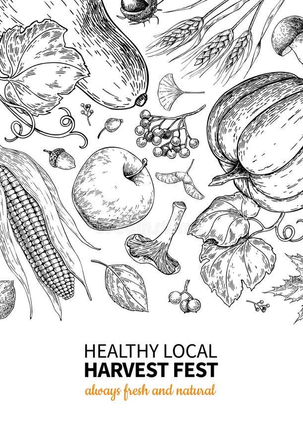 Żniwo festiwal Ręka rysująca rocznika wektoru ramy ilustracja z warzywami, owoc, liście Rolny Targowy plakat royalty ilustracja