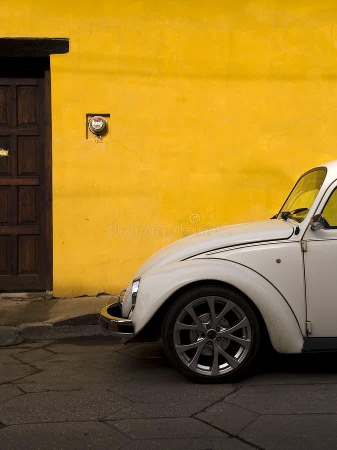 żuk Volkswagen zdjęcia royalty free