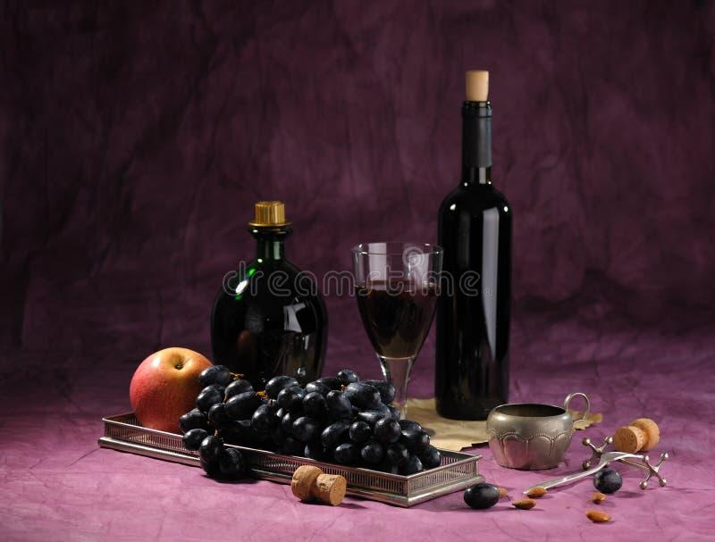 życia wciąż winograd zdjęcie royalty free