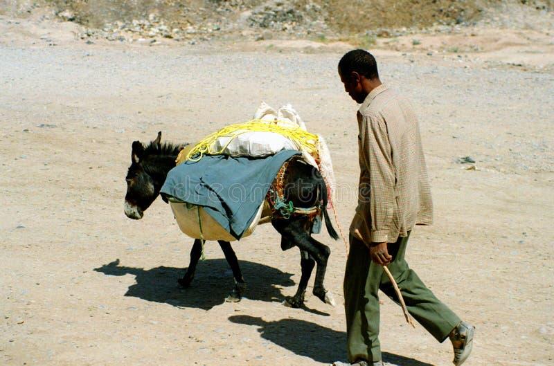 życie 1 maroka obraz stock