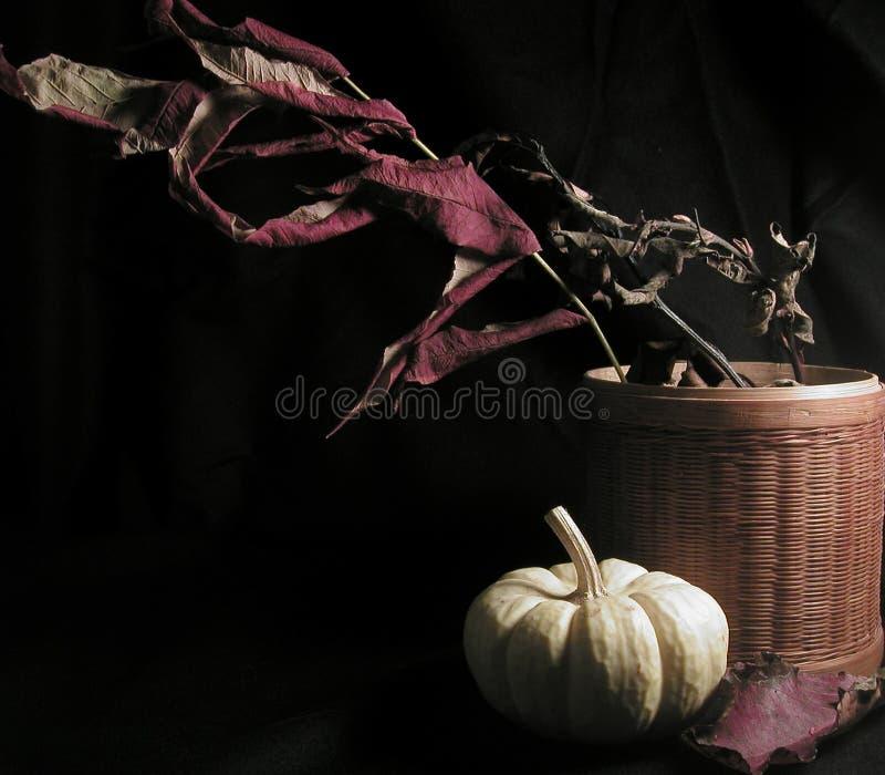 Download życie ciągle jesieni obraz stock. Obraz złożonej z kosz - 36531