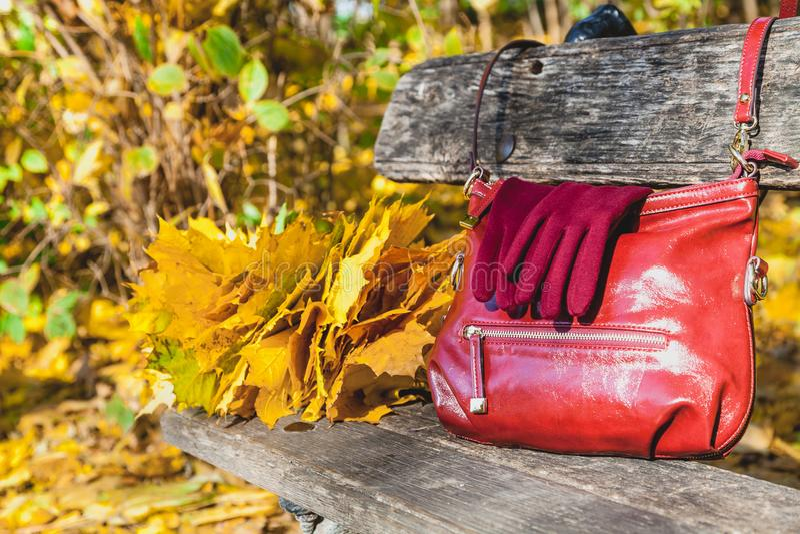życie ciągle jesieni damy torebka i rękawiczki obraz stock