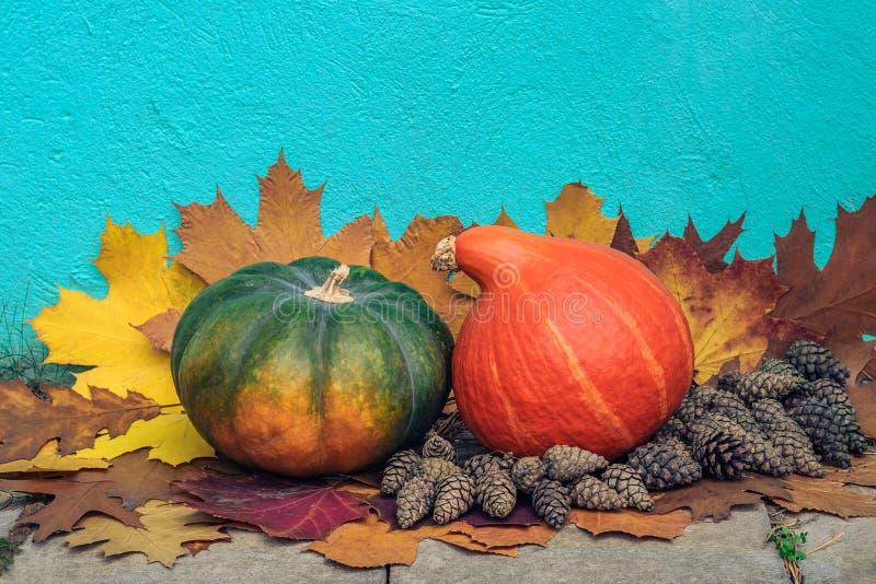 życie ciągle jesieni dwa sosna rożka na spadać liściach przeciw tłu beton gipsująca ściana i banie ilustracja wektor