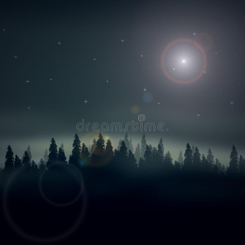 życie noc zdjęcia royalty free