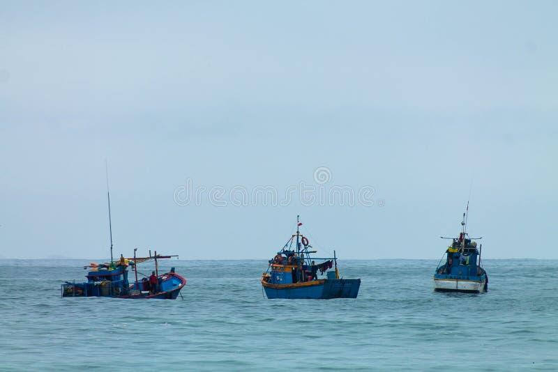 Życie w morzu obrazy royalty free