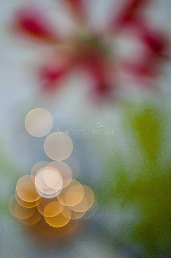 1 życie wciąż drzewni abstrakcjonistyczni christmass Bokeh zdjęcia stock