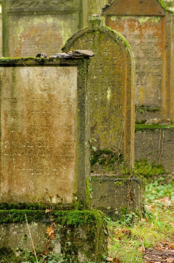 Żydowski cmentarz w Niemcy zdjęcia stock