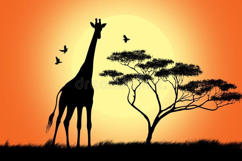 żyrafy czarny sylwetka ilustracji