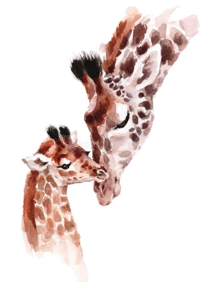 Żyrafy matki i dziecko akwareli ręka malowali dzikie zwierzę ilustrację odizolowywającą na białym tle royalty ilustracja