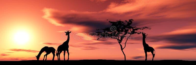 żyrafy rodzinne ilustracji