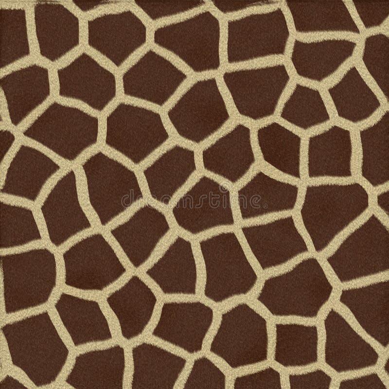 Żyrafy Tekstury Tła Futerko obrazy royalty free