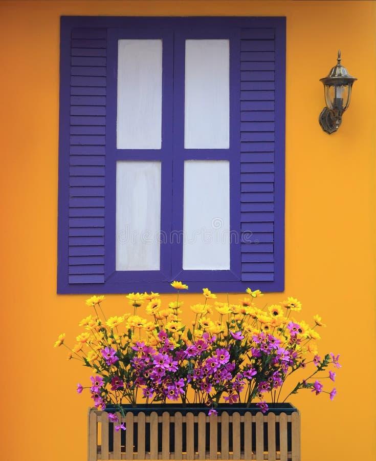 żywa kolor ściana obraz stock