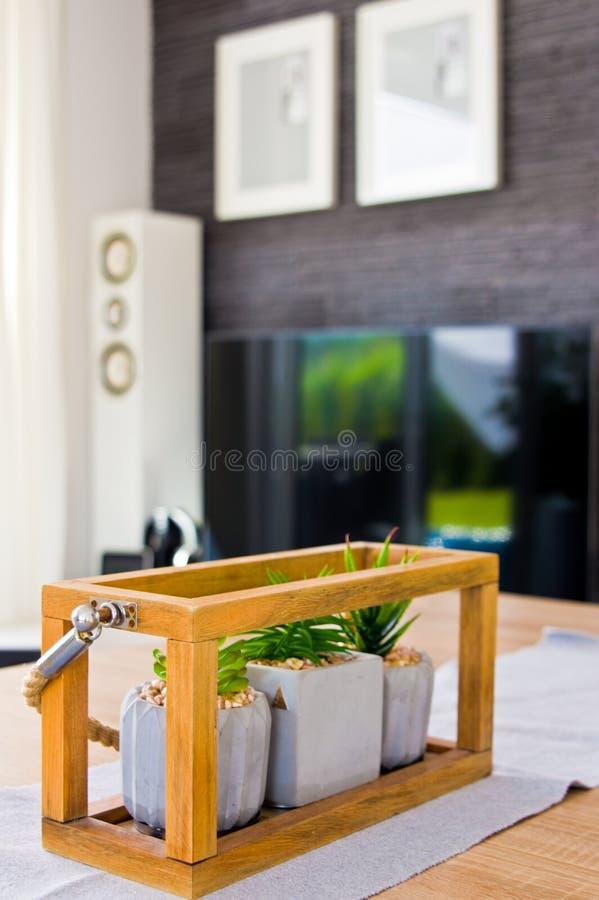 Żywa pokoju stołu dekoracja z małymi houseplants zdjęcie royalty free