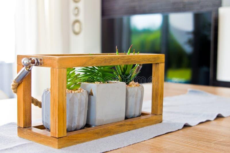 Żywa pokoju stołu dekoracja z małymi houseplants zdjęcie stock