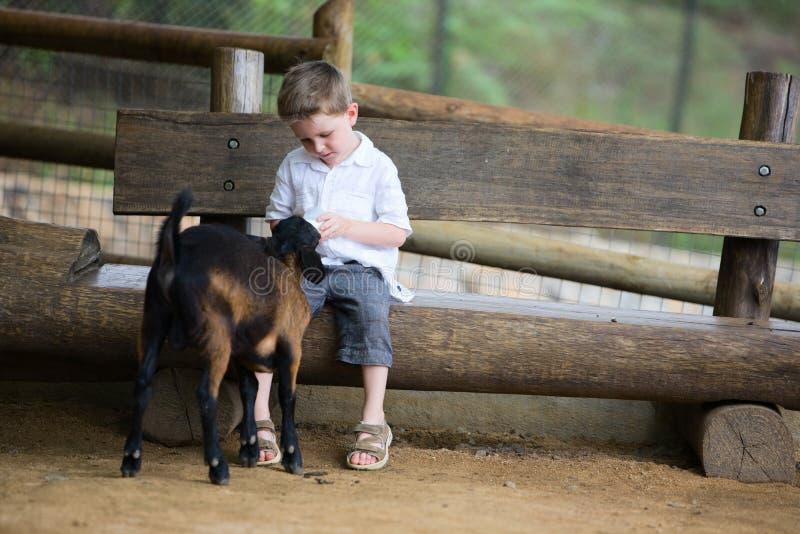 żywieniowa dziecko kózka obrazy royalty free