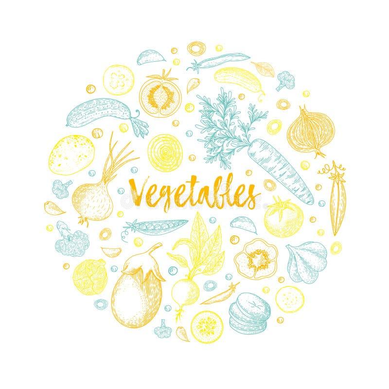 Żywność organiczna projekta szablon kolorowi świezi warzywa Szczegółowy jarski karmowy rysunek Rolny targowy produkt wielki ilustracji