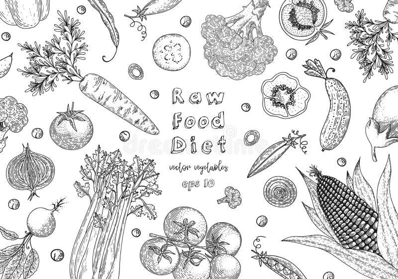 Żywność organiczna projekta szablon rynek produktów rolnictwa świeże warzywa Szczegółowy jarski karmowy rysunek Rolny targowy pro royalty ilustracja