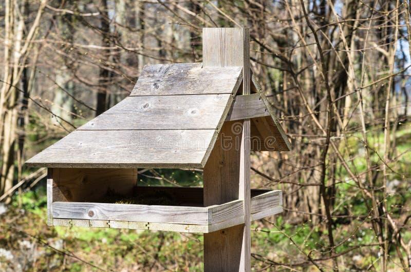 żywnościowa synklina ptak zdjęcia royalty free