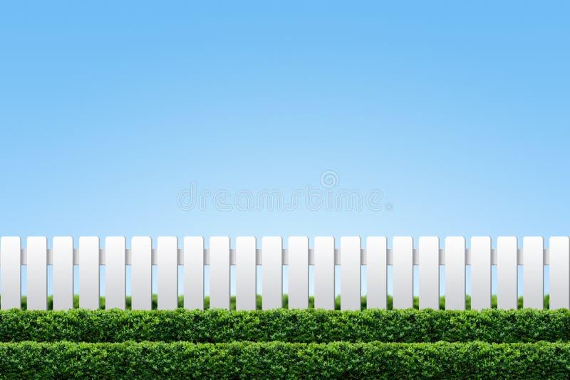 żywopłotu płotowy biel obrazy stock