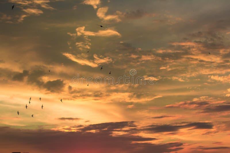 Żywy dramatyczny mroczny zmierzchu niebo fotografia royalty free