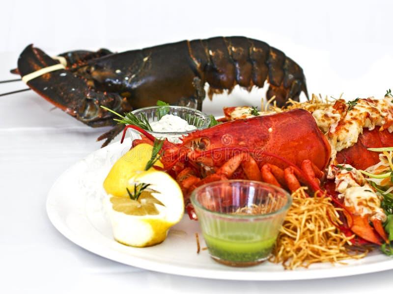 Żywy i gotujący homar z warzywami na białym talerzu Isolat zdjęcie royalty free