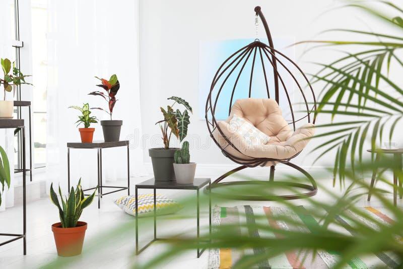 Żywy izbowy wnętrze z huśtawkowym krzesłem i roślinami Modny domowy wystr?j zdjęcie stock