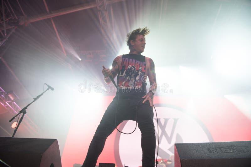 Żywy metalcore koncert fotografia royalty free