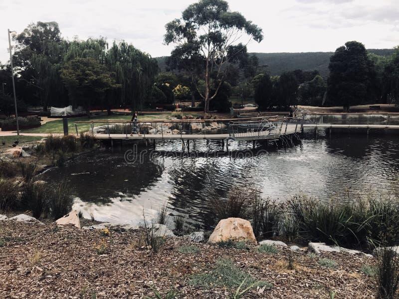 Żywy obrazek jezioro obrazy royalty free