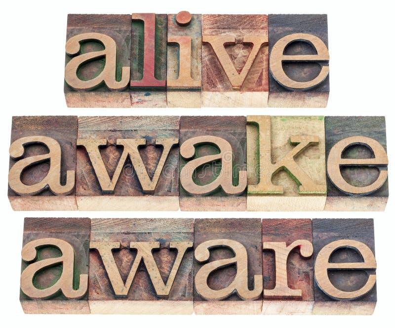 Żywy, obudzony, świadomy zdjęcie stock