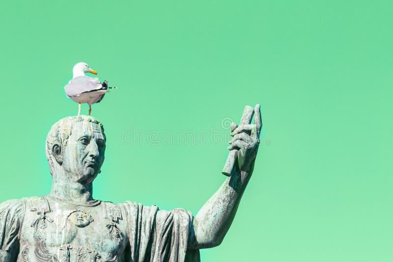 Άγαλμα του αυτοκράτορα Caesar Nervae Αύγουστος με το γλάρο στο κεφάλι Άτομο που παίρνει selfie Έννοια χιούμορ Πράσινο υπόβαθρο με στοκ εικόνα με δικαίωμα ελεύθερης χρήσης