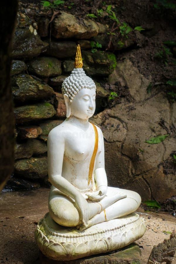 Άγαλμα του Βούδα στη ζούγκλα, Wat Palad, Chiang Mai, Ταϊλάνδη στοκ φωτογραφία με δικαίωμα ελεύθερης χρήσης