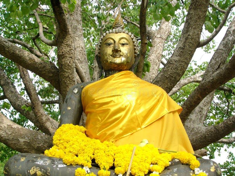 Download άγαλμα του Βούδα στοκ εικόνες. εικόνα από κίτρινος, γαλήνιος - 107598