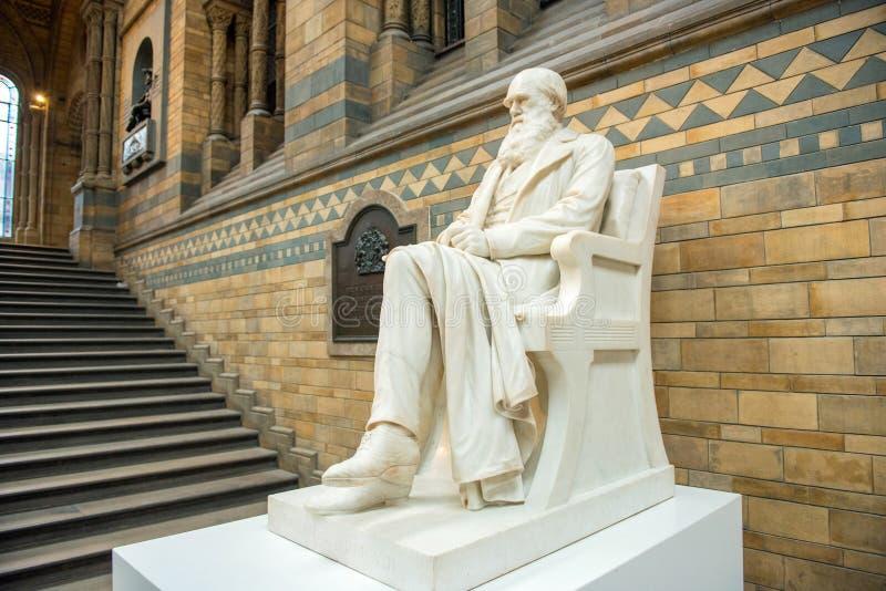 Άγαλμα του Charles Δαρβίνος στο μουσείο φυσικής ιστορίας, Λονδίνο στοκ εικόνα με δικαίωμα ελεύθερης χρήσης