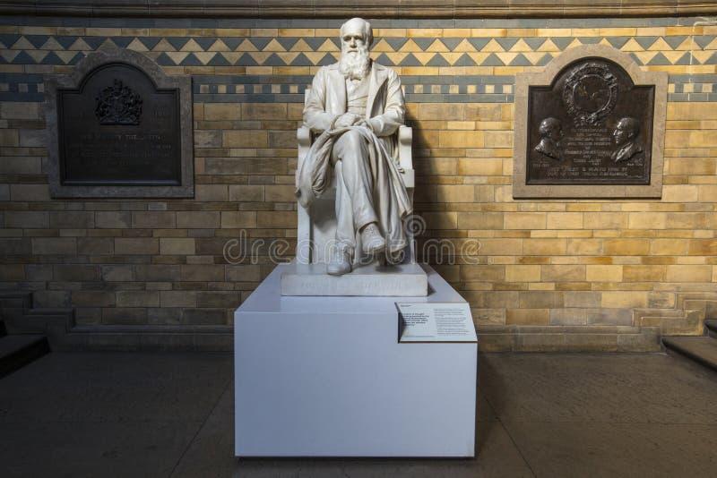 Άγαλμα του Charles Δαρβίνος στο μουσείο φυσικής ιστορίας στο Λονδίνο στοκ φωτογραφία με δικαίωμα ελεύθερης χρήσης