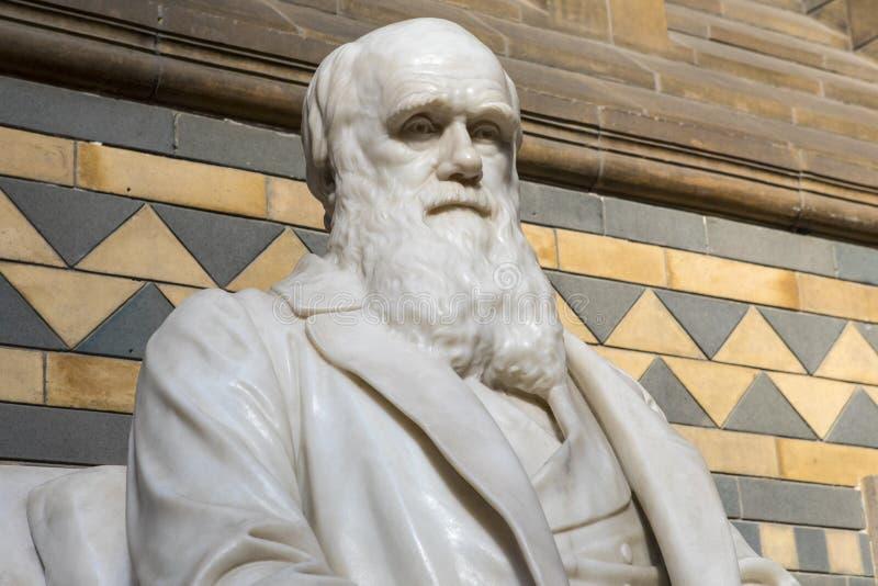 Άγαλμα του Charles Δαρβίνος στο μουσείο φυσικής ιστορίας στο Λονδίνο στοκ εικόνες