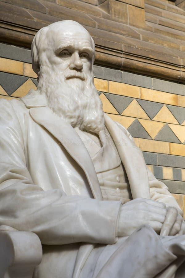 Άγαλμα του Charles Δαρβίνος στο μουσείο φυσικής ιστορίας στο Λονδίνο στοκ εικόνα