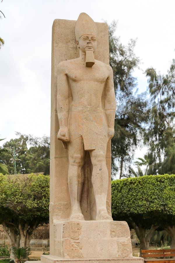Άγαλμα Ramesses ΙΙ στη Μέμφιδα, Κάιρο, Αίγυπτος στοκ εικόνα