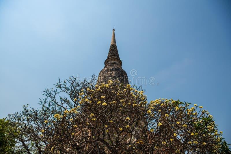 Άγαλμα και παγόδα του Βούδα σε Mongkhon στοκ εικόνες