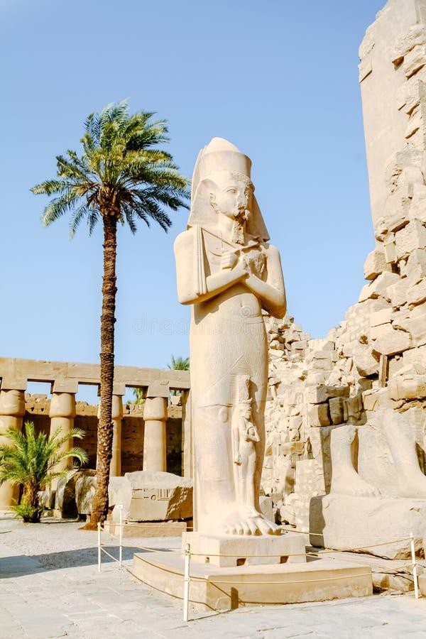 Άγαλμα του βασιλιά Ramses ΙΙ στο ναό Karnak luxor της Αιγύπτου στοκ φωτογραφίες με δικαίωμα ελεύθερης χρήσης