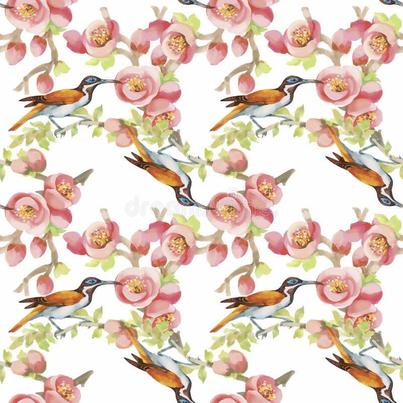 Άγρια εξωτικά πουλιά Watercolor στο άνευ ραφής σχέδιο λουλουδιών στο άσπρο υπόβαθρο ελεύθερη απεικόνιση δικαιώματος