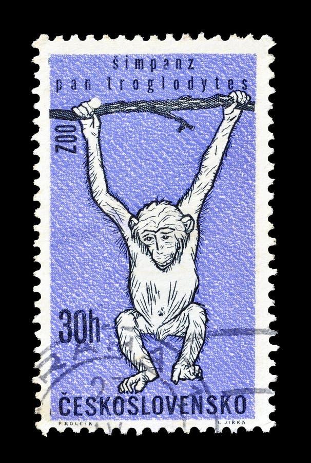 Άγρια ζώα στα γραμματόσημα στοκ φωτογραφίες